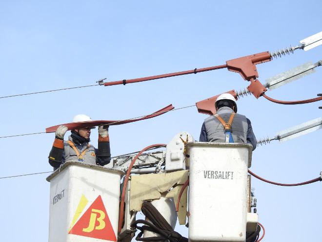 Dos técnicos aislan los puntos peligrosos en el apoyo donde se electrocutó el águila de Bonelli